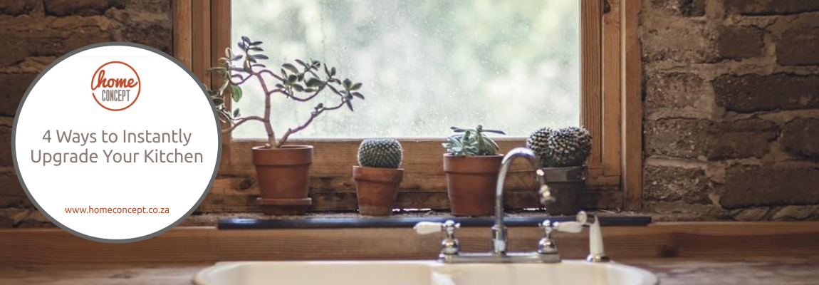 4 potted cacti lined up before a kitchen window